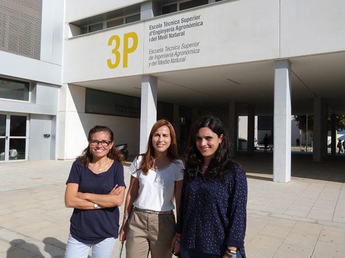 mujeres investigadoras